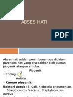 ABSES HATI