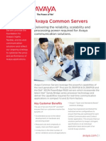Avaya Common Servers