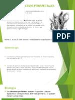 Abscesos y Fistulas abscesos y fistulas perianalesPerianales