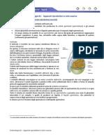 Embriologia 01 - Apparati Riproduttori e Ciclo Ovarico