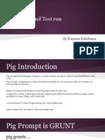 piginstallationandtestrun-131204125402-phpapp02