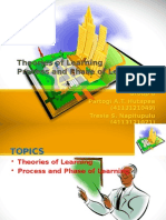 Theories of Learning, Process and Phase of Learning