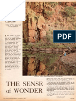 Rachel Carson - Sense of Wonder 1