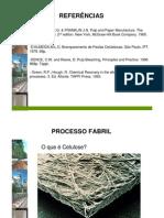 2-Introdução Ao Processo Celulose
