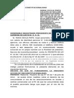 ACCION DE  INSCONSTITUCIONALIDAD DE MARIA PINTO.docx