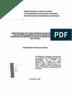 2003 DISS Identificação de Características Determinantes Das Potencialidades de Um Cluster
