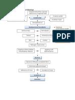 Pathogenesis Dan Patofisiologi