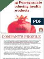 projectmarketingpresentationturnkey-130903035325-phpapp01 (1).ppsx