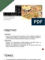 Presentacion Historia revolcion neolitica