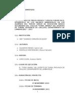 Proyecto de Investigacion - Accion 2011 - 2