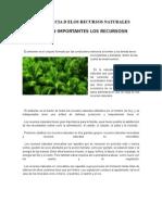 Importancia de los Recursos Naturales en la agricultura