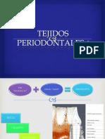 TEJIDOS  PERIODONTALES  ESTETICA