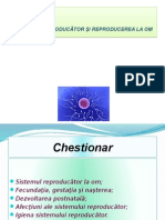 sistemul_reproducator_i_reproducerea_la_om.pptx