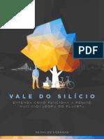 Vale Do Silicio - Reinaldo Normand
