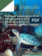 Conservación Carey