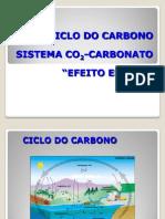Aula+3+Ciclo+Carbono