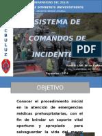 Sistema de Comandos de Incidentes 2014 Luz