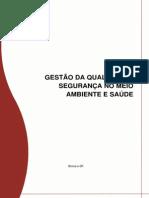 Gestão Da Qualidade e Segurança Meio Ambiente e Saúde (PRÉVIA)