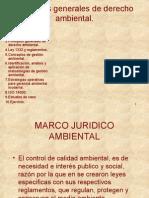 Derecho Ambientales
