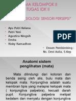 Sistem Sensori Persepsi