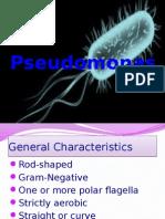 Pseudomonas and Aeromonas