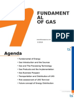 Fundamental Gas