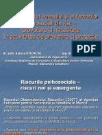 2014 Presentation - Raluca Iordache Viorica Petreanu, InCDPM
