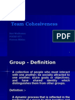 Group Cohesiveness