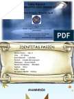Combustio ppt