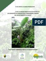 Guía Técnico Ambiental Plátano