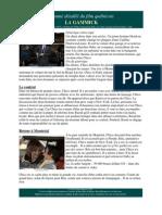 Résumé du film québécois La Gammick