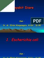 2. Penyebab Diare - Infeksi Oleh E.coli Dan Salmonella