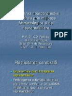 neuroplasticitatea 1.5