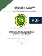 Informe Practicas Finales Utea 11