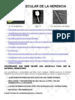 BASE MOLECULAR DE LA HERENCIA.pdf