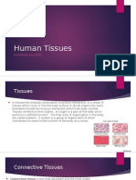 human tissues