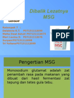PPT MSG