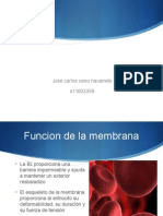 Membrana Eritrocitaria y Hemoglobina