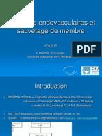 Thérapies Endovasculaires Et Sauvetage de Membres Inférieurs