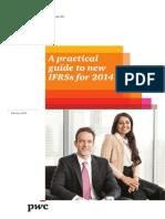 Guía Práctica de nuevas NIIF para el 2014