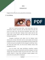 bab1-3 retino