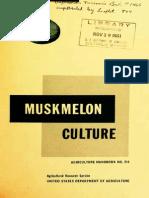 Muskmelon Culture