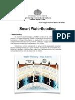 Smart Waterflooding