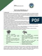 Instructivo Practica 10 Reino Animal Inv. b2 Efpem 2014