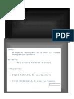 REALIDAD DEMOGRAFICA DEL PERÚ.docx