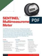 SENTINEL Multimeasurement Meter