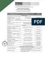 CAS 2015 024 Cronograma