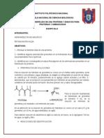 Hidrolisis de Una Proteina