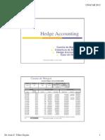 Hedge Accounting01 Riesgos 2013