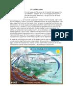 Ciclo Del Agua y Del Carbono